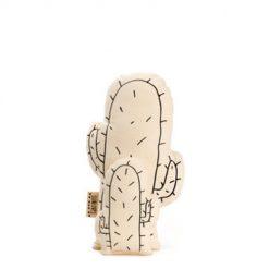 Lijnloves Cactus